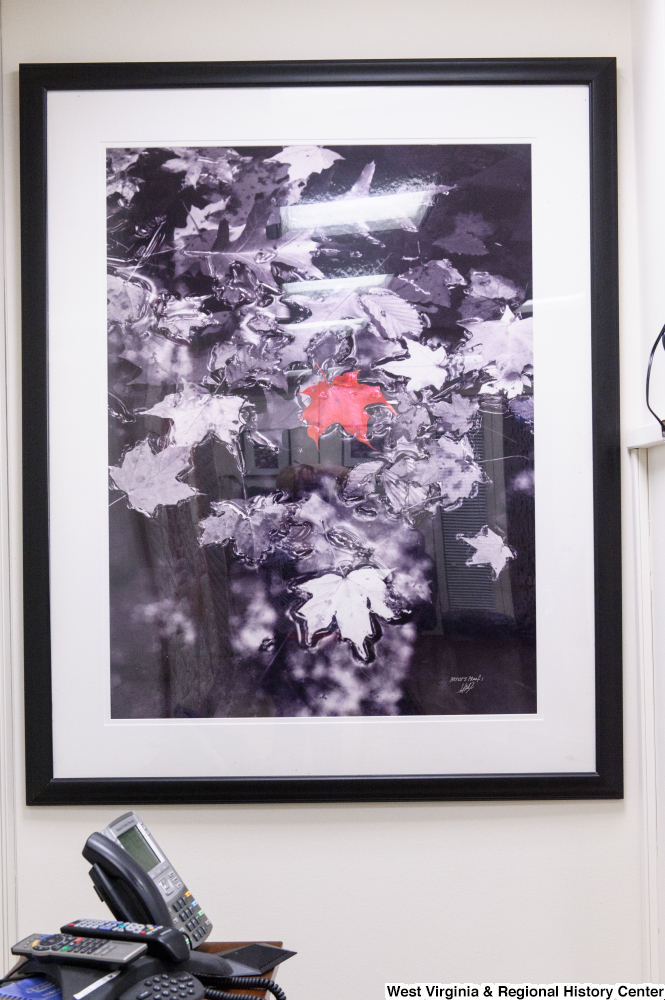 "[""A photograph of a red leaf hangs in Senator Rockefeller's office.""]%"